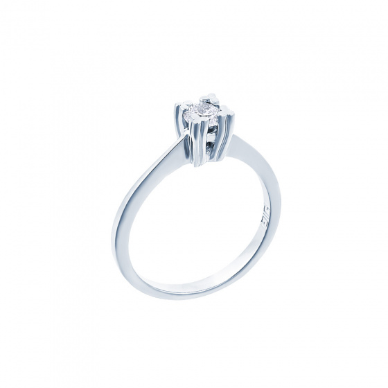 "Image of """"Eternity Plus 026"" white gold engagement ring K14"""