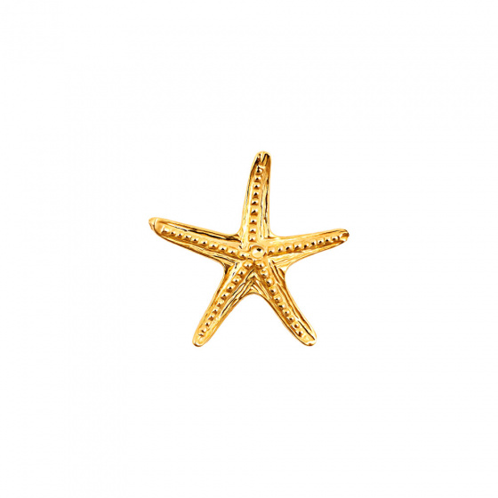"Image of """"Starfish #2"" gold K9 pendant"""