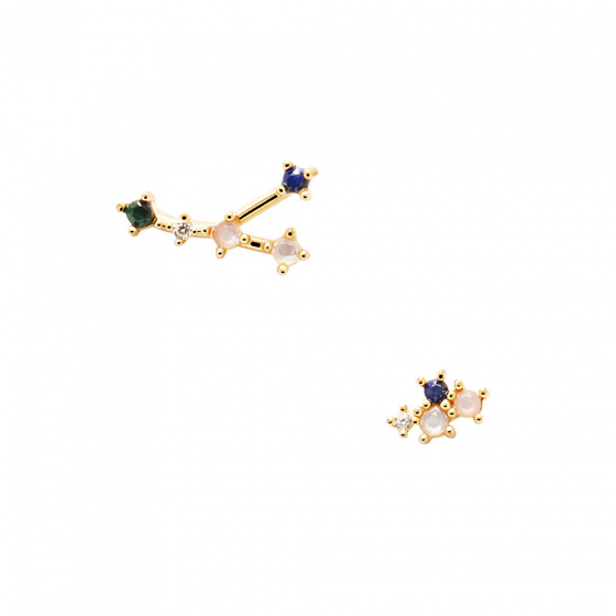 "Image of ""PDPAOLA Zodiac Cancer silver earrings gold plated, AR01-407-U"""