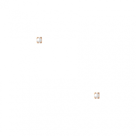 """Image of """"""""Single Pearl Bar"""" silver earrings rose gold plated"""""""