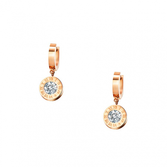 "Image of ""Stainless steel rose gold earrings, TER357"""