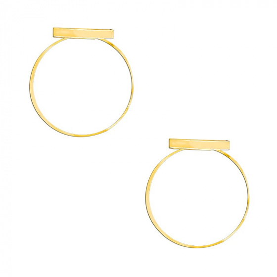 "Image of ""Stainless steel gold earrings, TER291"""