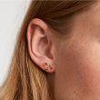 "Image of ""PDPAOLA Zodiac Leo silver earrings gold plated, AR01-408-U"""